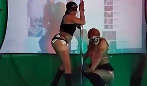Striptérky jsou milé, když pohybují osly